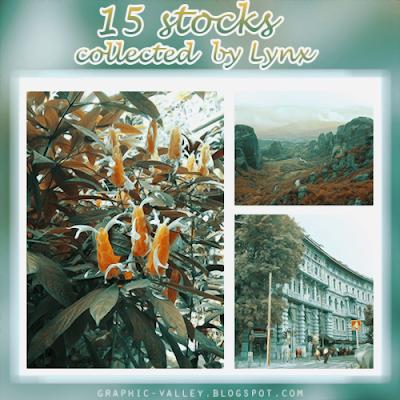 http://ginny1xd.deviantart.com/art/Holidays-Stocks-Pack-552910037