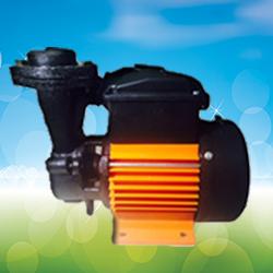 CRI Self Priming Centrifugal Regenerative Monoblock Pump NR2 (0.5HP) Online, India - Pumpkart.com