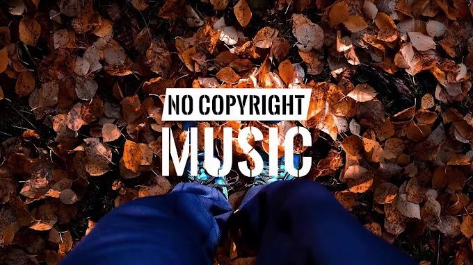 Knowledge - Julian Avila | Free Music