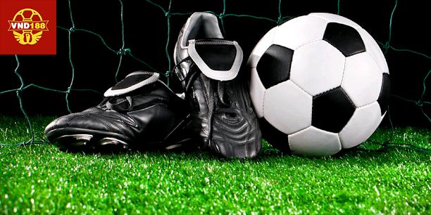 cá độ bóng đá online miễn phí