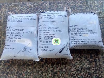 Benih pesanan EUIS SUTARSIH Sukoharjo, Jateng.   (Setelah Packing)