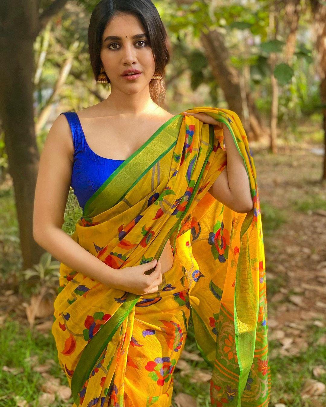 Nabha Natesh Saree Photos