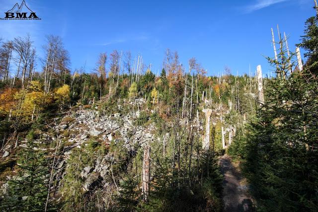 wandern Lusen - Klause - Teufelsloch - wanderung Goldsteig Fernwanderweg