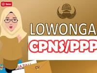 Loker CPNS Buka Setelah Pelantikan Presiden