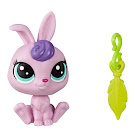 Littlest Pet Shop Lucky Pets Lucky Pets Fortune Cookie Gwynnie (#No#) Pet