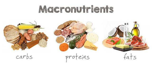 kebutuhan makronutrisi