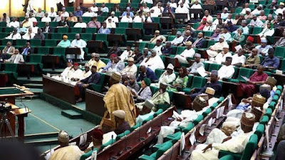 House Of Reps Reject Move To Evacuate Nigerians From China