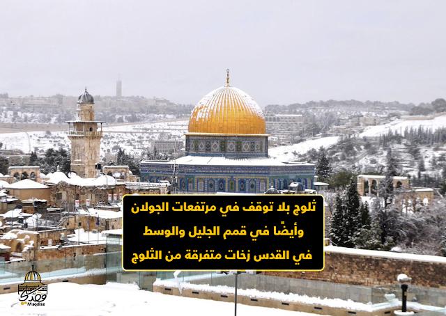 ثلوج بلا توقف في مرتفعات الجولان وأيضًا في قمم الجليل والوسط - في القدس زخات متفرقة من الثلوج