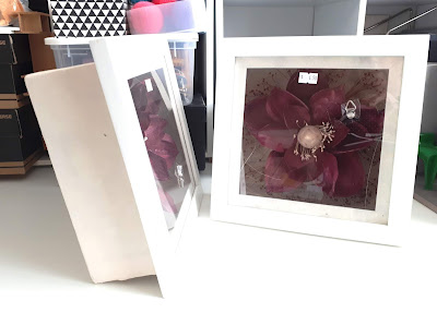 Two square white shadowbox fromes containing large maroon flowers.