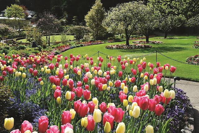 Primavera em Victoria