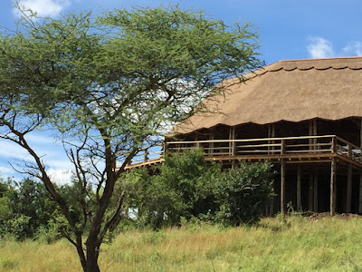 Kubu Kubu Tented Camp - Serengeti