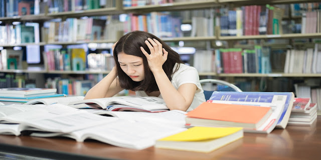 Why Student Don't Revise