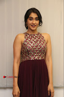 Actress Regina Candra Latest Stills in Maroon Long Dress at Saravanan Irukka Bayamaen Movie Success Meet .COM 0029.jpg