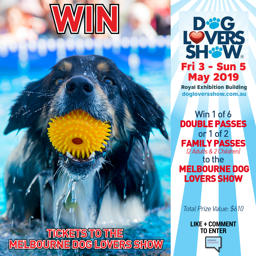 e97c0c0c632 Melbourne Dog Lovers Show 2019 - Win Tickets. Written by Australian Dog  Lover 2 months ago ...