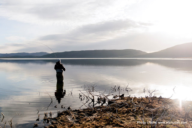 a fisherman wading in the water, casting his line