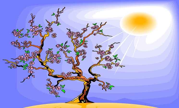 Makalah Respon Tumbuhan Terhadap lama Penyinaran Matahari (Fotoperiodisitas)