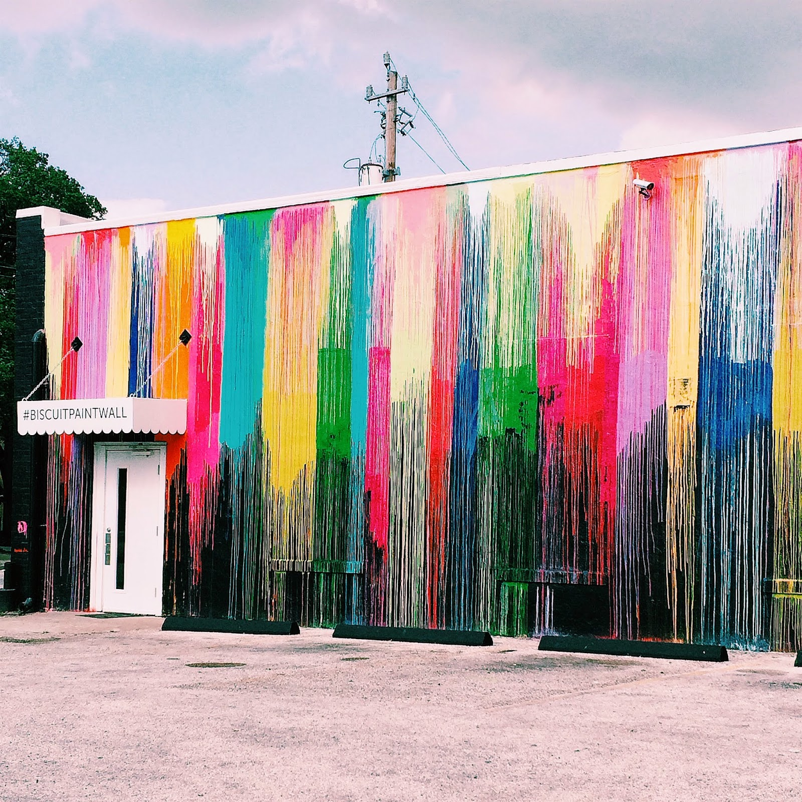 Trendy in Texas, Biscuit Home, Westheimer, Houston, Montrose, #BiscuitPaintWall, Biscuit Paint Wall
