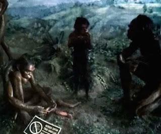 contoh manusia purba