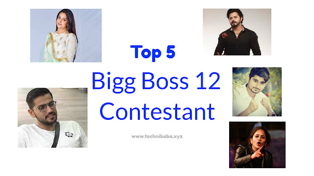 Top 5 Contestants Of Bigg Boss 12