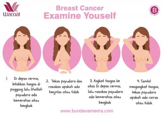 SADARI kanker payudara, SADANIS, kanker payudara, cara deteksi dini kanker payudara, kisah nyata kanker payudara, berpartisipasi di bulan breascancer awareness, breast cancer awareness month