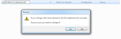 Rename the Extension of the file
