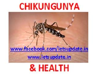 Chikungunya -Health-letsupdate