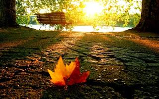خلفيات عن الخريف