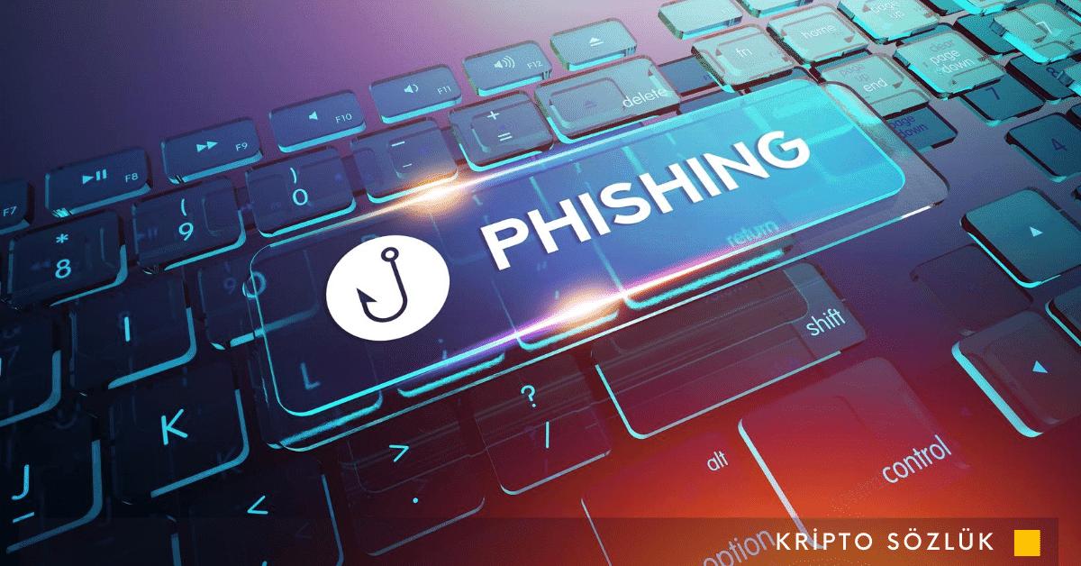 Dolandırıcılara Dikkat:12 Bitcoin'i Phishing Saldırısı İle Kaybetti