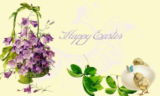 download besplatne slike za mobitele 800x480 Uskrs čestitke blagdani Happy Easter