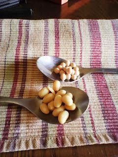 latte di soia fai da te autoproduzione