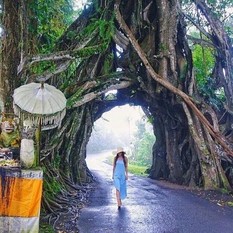 Wisata Unik Bali