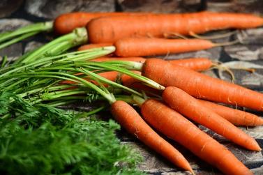 Wortel, Sayuran Penghasil Vitamin A Terbaik
