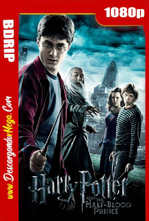 Harry Potter y el misterio del príncipe (2009) BDRip 1080p Latino