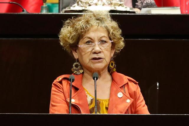 Urge priorizar atención de la salud mental en instituciones públicas: Dionicia Vázquez