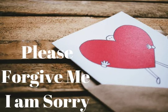 I Am Sorry Quotes For Hurting You