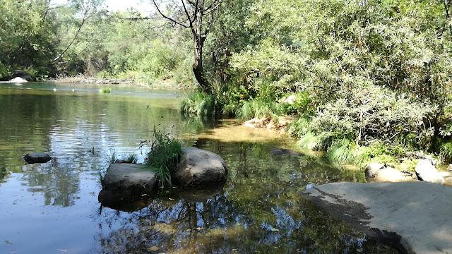 Zona Fluvial para crianças