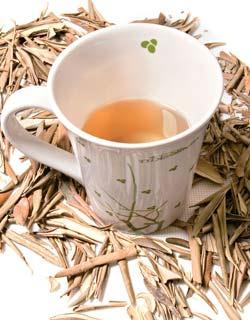 Chá de Oliveira Para Emagrecer!