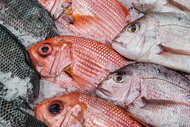 Cara Membuat Ikan Kakap Asam Manis Lezat dan Istimewa