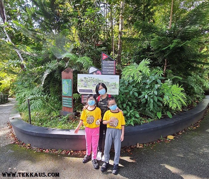 The Habitat Penang What To Do Activities