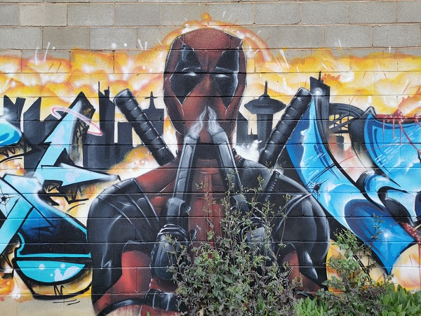 Albury Street Art by Kade Sarte
