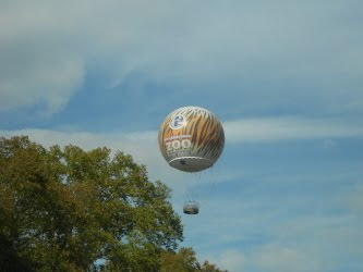 Hot Air Balloon at the Philadelphia Zoo