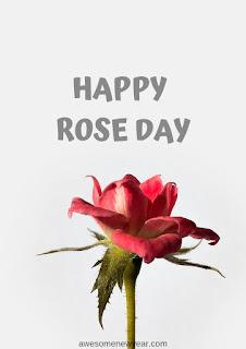 Rose Day pics