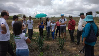 """NEA recebe visita de alunos e professores do PE e exterior. Grupo visita  fazenda """"Gavião"""""""