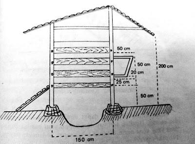 Kandang kambing sistem tunggal