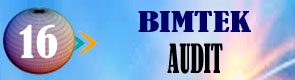 Bimtek Audit