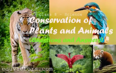 CBSE Class 8 - Science -Chapter 7 -  Conservation of Plants and Animals (Questions and Answers)(#eduvictors)(#class8Science)