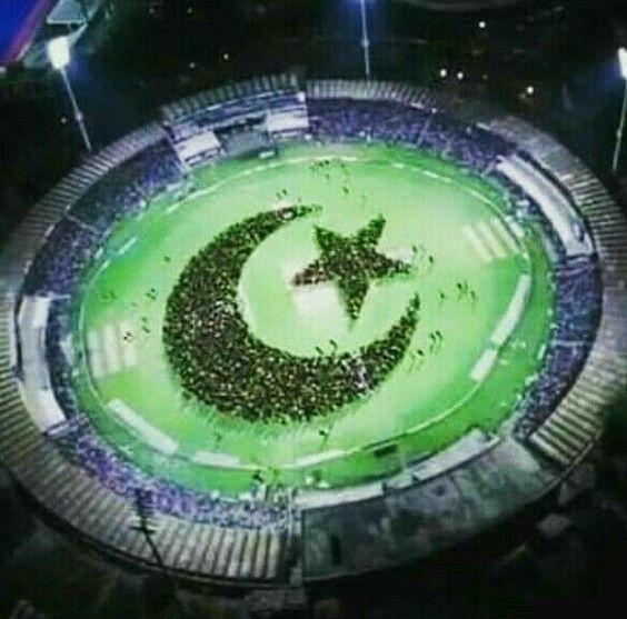 Pakistani%2BFlag%2BHoly%2BDay%2B%252813%2529