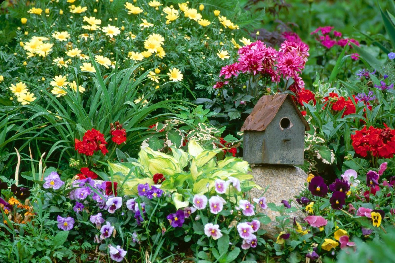 Fond ecran gratuit printemps paysage fonds d 39 cran hd - Catalogue de fleurs gratuit ...