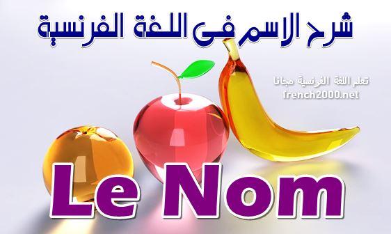 Le Nom   شرح الاسم فى اللغة الفرنسية