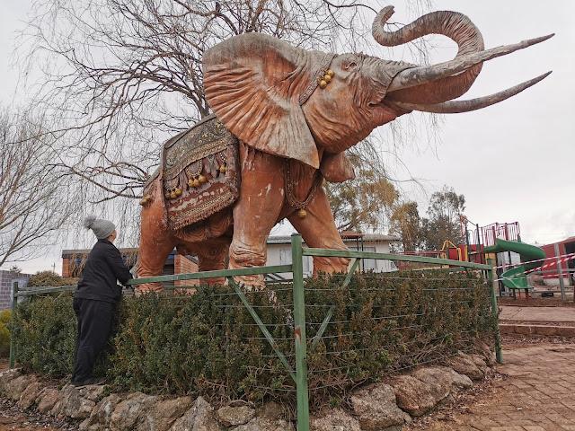 George the Elephant   Nimmitabel Bakery